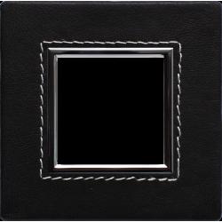 4509581 Skin, Frame 1x