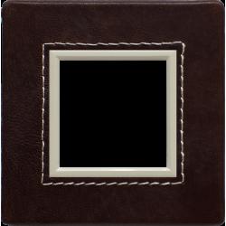 4522581 Skin, Frame 1x